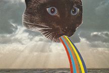 LSD Katjes