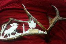 antler carvings / moose elk any type of antler