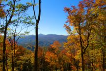 Autumn in the North Carolina Mountains / Views of the Blue Ridge in Autumn