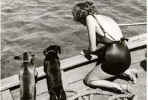 Little Long Dogs / by Emilie Broske