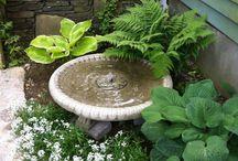 jezírko, fontánky