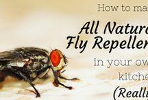 Kill fly / Make yr own spray