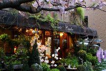 Моё кафе- цветочный магазин