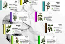 Fragancias para Aromatizadores / Fragancias para nuestros Aromatizadores Ambientadores Eléctricos por Ventilación Forzada, gamas AIM BASIC, AIM PRO y AIM DECO. www.designbyjaf.com