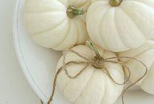 White Pumpkins / by Donna Cefole Maillet