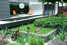 Photographic Studio Garden Ideas
