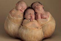 Anne Geddes és más babák