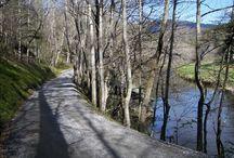 Carolina Mtn Scenery
