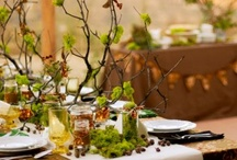 Tablescapes / by Cindy Davidson