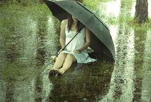 Gentle Rains