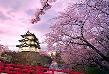 Japán lapbook