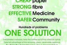 The Benefits of Cannabis/Hemp / by Lisa Corber