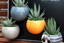 Magnetized Nordic Planters