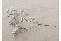 цветы / цветочные моно букеты