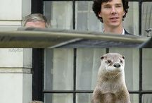 Martin Freeman & Benedict Cumberbatch