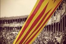 Actualitat Països Catalans