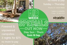 Camping Specials / Camping specials & deals for Straddie!