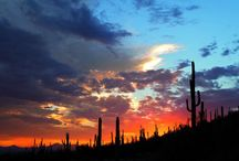 Unique Pic's of Arizona / Arizona beauty