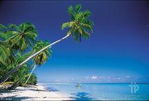 Polinesia francese / French Polynesia