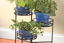plant holders,stands