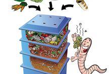 Wurmkisten Anleitung / Ein Wurmkiste einzurichten ist ganz einfach. Man benötigt nur eien Wurmfarm, Kompostwürmer und etwas Biomüll