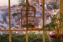 { Cookies Love } Lisboa