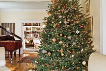 Decorated Christmas Trees / Beautiful decorated Christmas trees