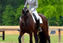 Dressage Show Clothes / To follow our Dress for Success theme, we want to highlight some of the products we see our top customers wearing in the ring.  Please feel free to post your pictures and highlight what brands you are wearing as well!