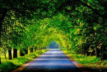 Nature / My nature photos