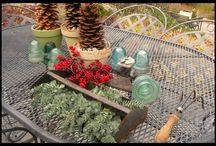 Gardening Gadgetry / Gadgets & tools for the modern gardener