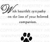 Quote animals / Pets