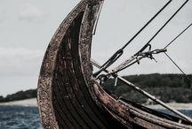 ↠ vikings.