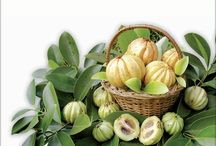 Garcinia Cambogia Natural Weightloss Remedy