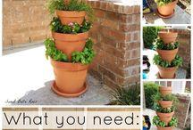 Gardening / Ideas for a balcony