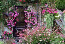 English gardens/cottage gardens