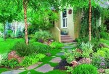landscaping ideas / by Gigi Skinner