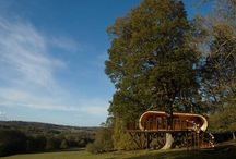 Tiny House / Cute and sustainable