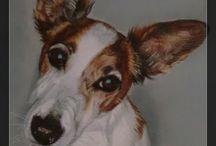 dieren - animals / portrettekeningen van dieren