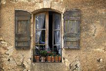 The windows