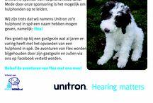 Unitron en Hulphond Nederland / Unitron is sponsor van Hulphond Nederland. Hierdoor hebben we een hulphond in spé een naam mogen geven. Maak kennis met Flex!