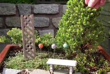 fairy garden project / Fairy garden in front of my house