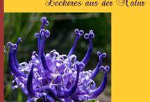 eBook Tipp / eBooks aus der Outdoor & Survival Branche, langzeit Expeditionen & Abenteuer sowie essbare Wildpflanzen & pflanzliche Notnahrung