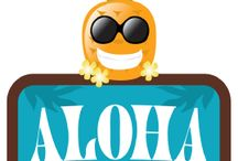 Havaii party