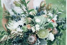Wedding Bouquets - Proteaceae