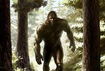 Bigfoot Photos