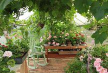 Greenhouse lifestyle in Ruusunmekko / Relaxing moments in Ruusunmekko garden's three greenhouses. These Juliana Greenhouses are made in Denmark.
