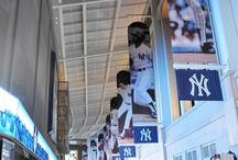 Yankees and Baseball