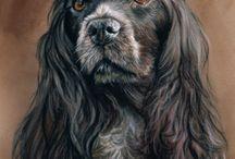 Собаки.Портрет.