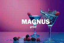 CH: Magnus Bane