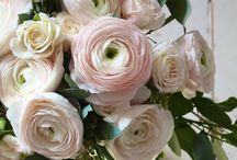 Pink Petals / Pretty bouquets & sweet things